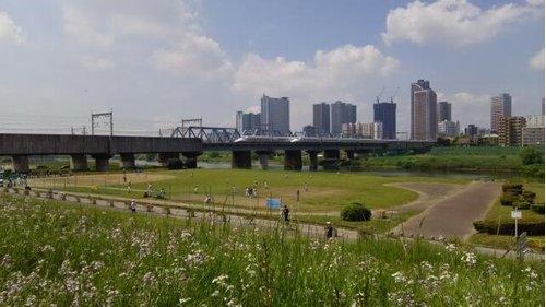 多摩川丸子橋緑地まで970m 東急多摩川線の沼部駅から西に160m:徒歩2分にある多摩川べりの緑地。