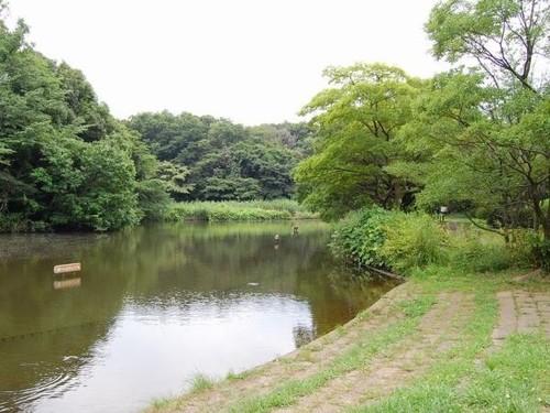 公園(400m)