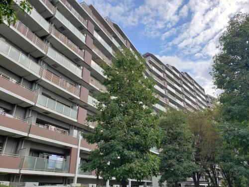 パークウエスト東京イーストブロックB 棟の物件画像