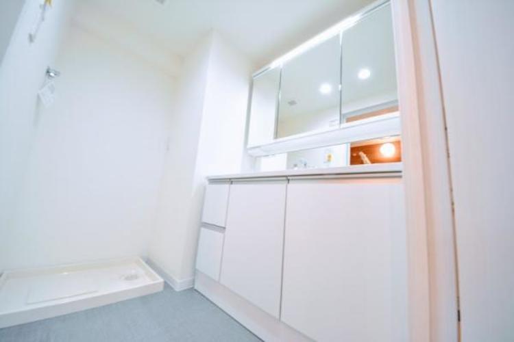 豊富な収納、大きな三面鏡付き洗面化粧台