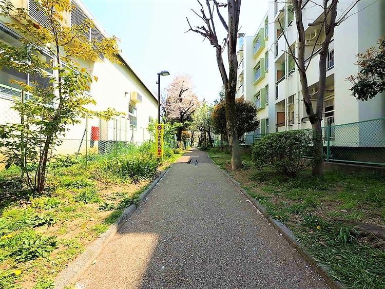 北沢川緑道 新井 距離350m