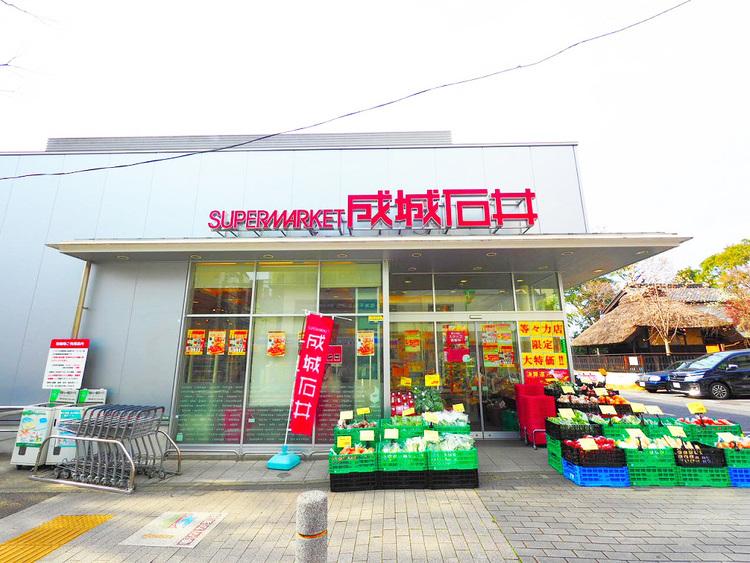 成城石井 等々力店  距離650m