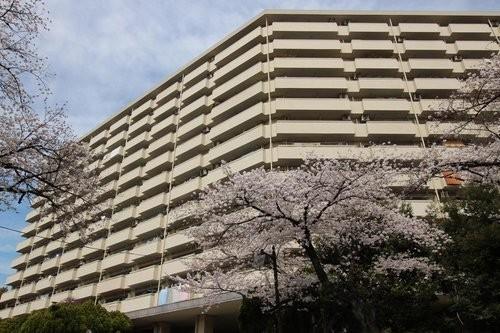 赤羽台四丁目住宅(9F)の画像