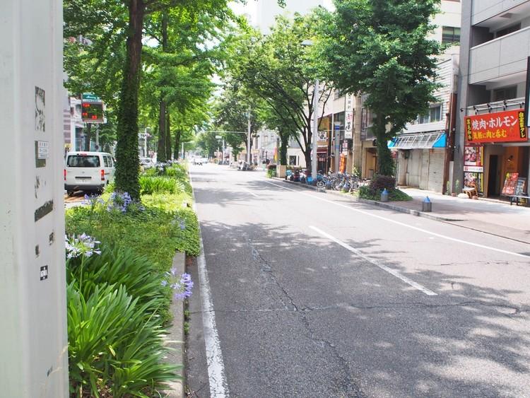 前面道路は歩道があり、幅員も広く開放感たっぷりです。
