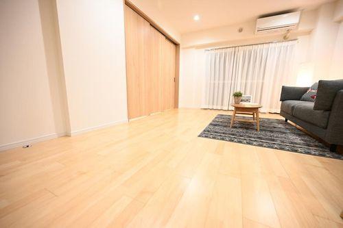 近鉄ハイツ新宿(301)の画像