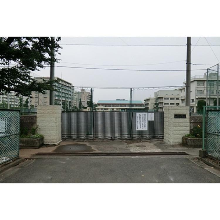 柳沢中学校(約700m)