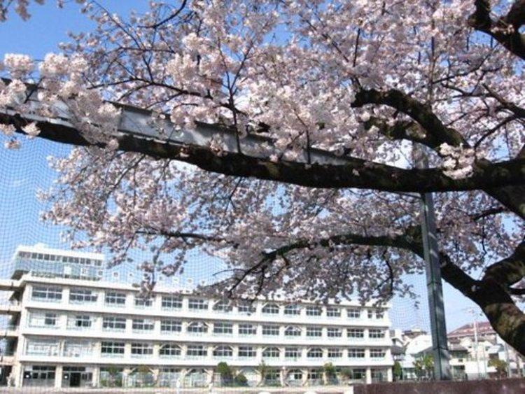 武蔵野市立第一中学校まで1100m