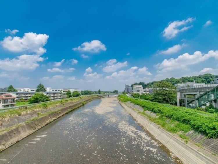 マンションから駅へ向かう途中には大栗川。健康的にランニングをする人も目立ちます。ペットのお散歩にも良い河川敷ですよ。