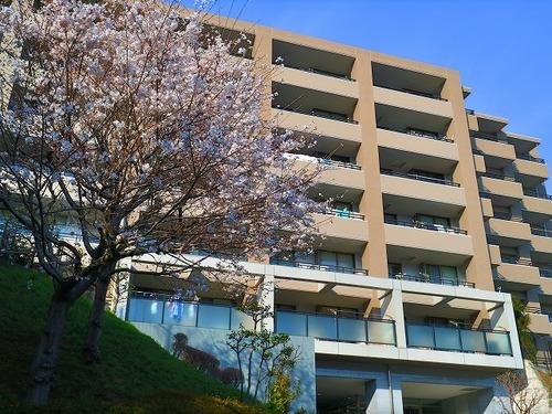 大切なペットと暮らせる♪「横浜三ッ池公園パーク・ホームズ」南西角部屋【reform】の物件画像