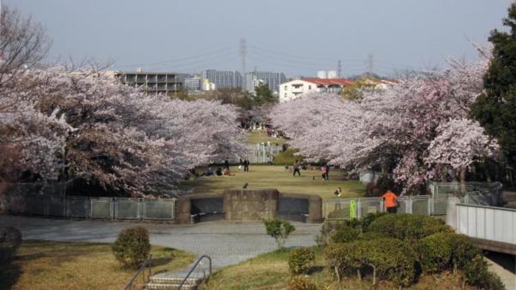奈良原公園 140m