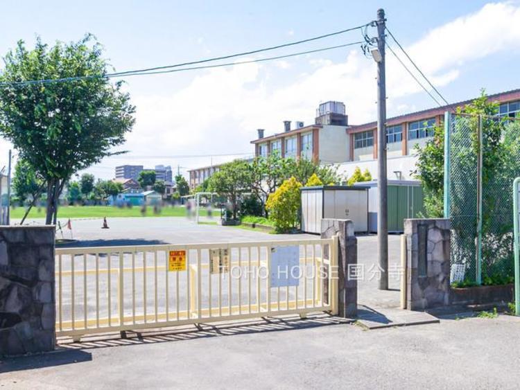 小金井市立前原小学校まで750m