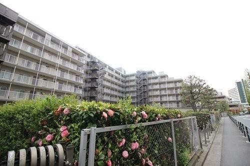 中川ビューハイツ(3F)の画像