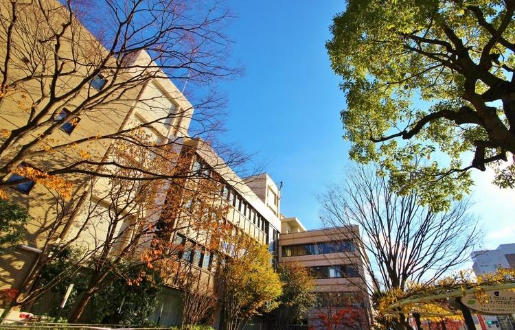 江戸川区役所:1036m