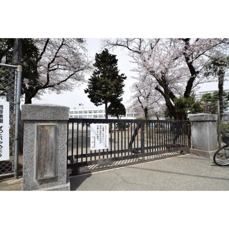 拝島第三小学校(約500m)