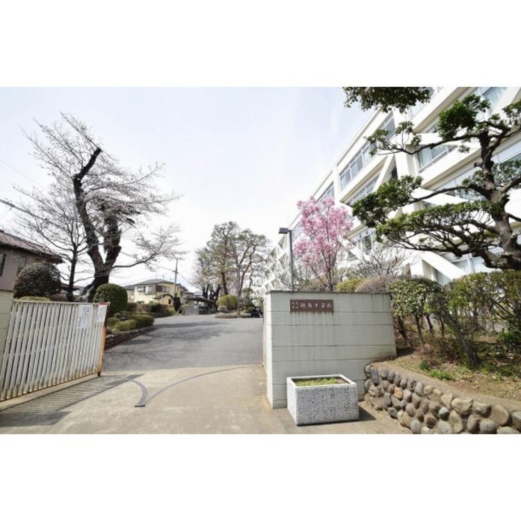 拝島中学校(約700m)