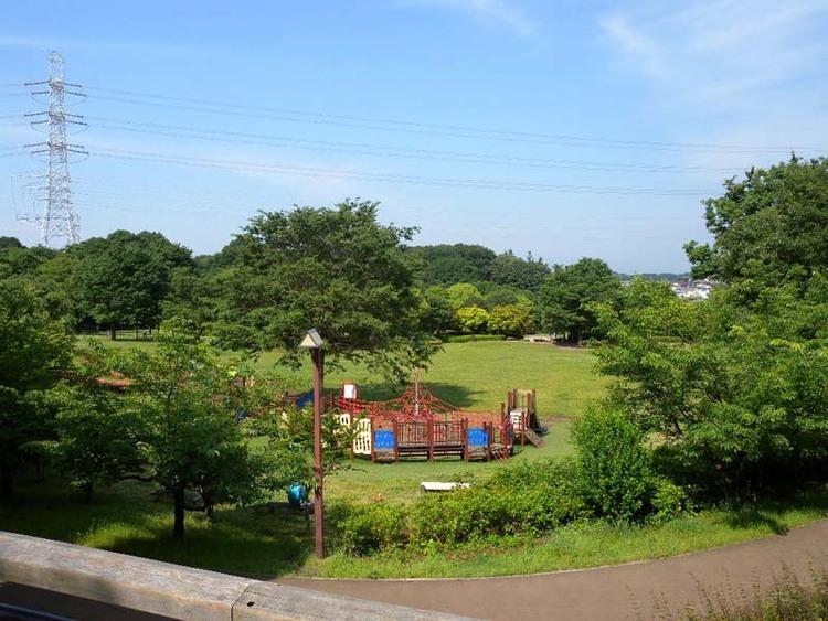 王禅寺ふるさと公園 距離約800m