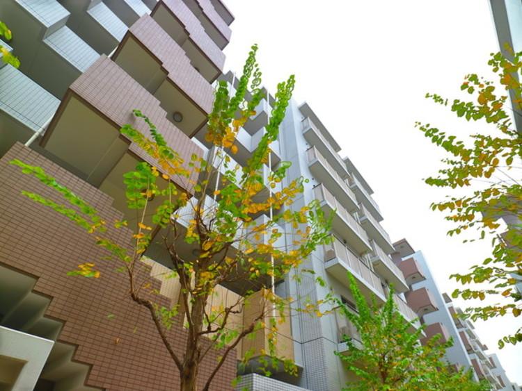 おしゃれな雰囲気や自然の潤い、親しみやすさといった個性を、街に新たな価値をもたらし続けてくれます。