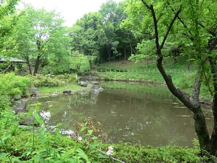 東中野公園610