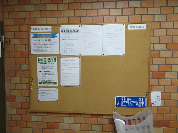 掲示板には様々な情報が掲示されています