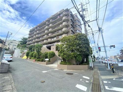柿生シティハウス 「柿生」駅 歩7分の画像