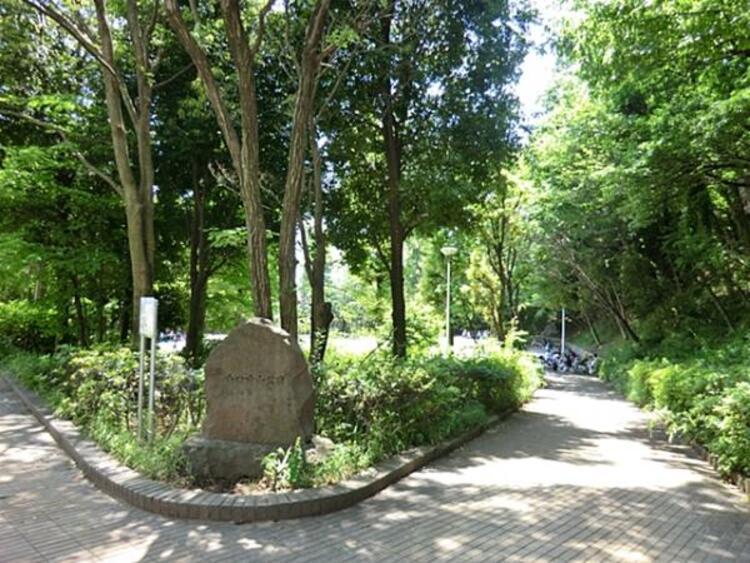 山口白山公園550m