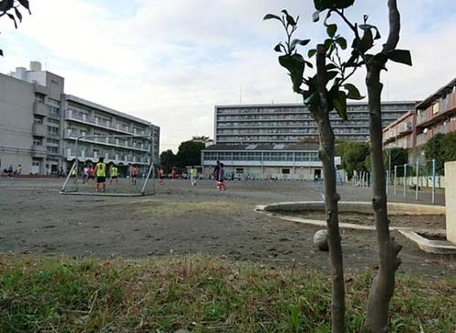 菊名ハイツ4号館の物件画像