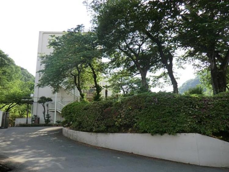 浅川中学校 230m