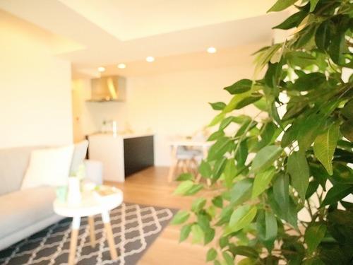 「オリエント三軒茶屋ハウス」~renovation~大切なペットと生活できるお部屋の画像