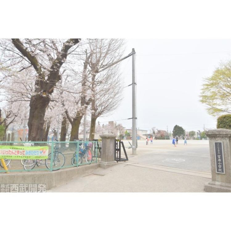 宮原小学校(約500m)
