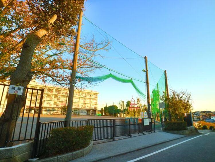 横浜市立篠原小学校 約550m