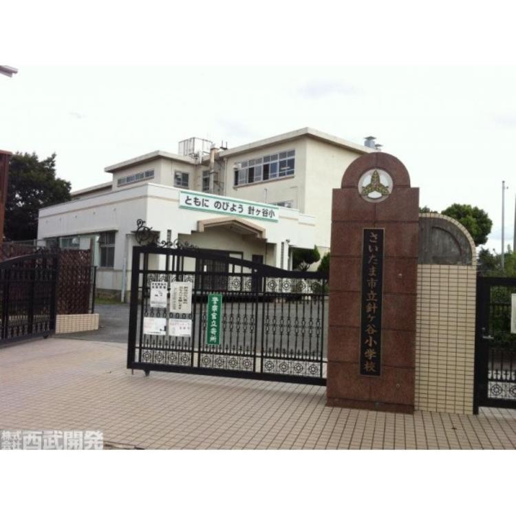 針ヶ谷小学校(約500m)