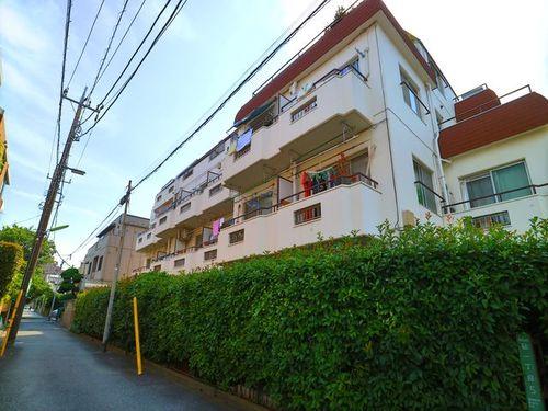 最上階角住居の開放感 『 パーセル砧 』Renovationの物件画像