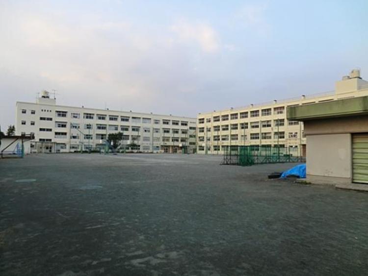 横浜市立豊田中学校 約800m