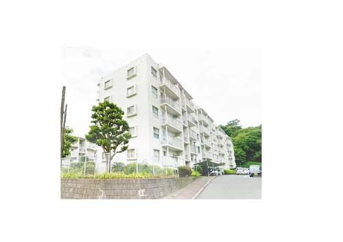 興人磯子台マンションK-1号棟(306)の画像