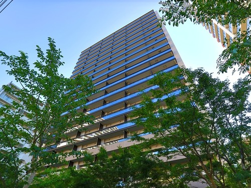 『ザ・ガーデンテラス目黒』 ~目黒川の桜並木を一望~目黒駅より10分の立地の画像