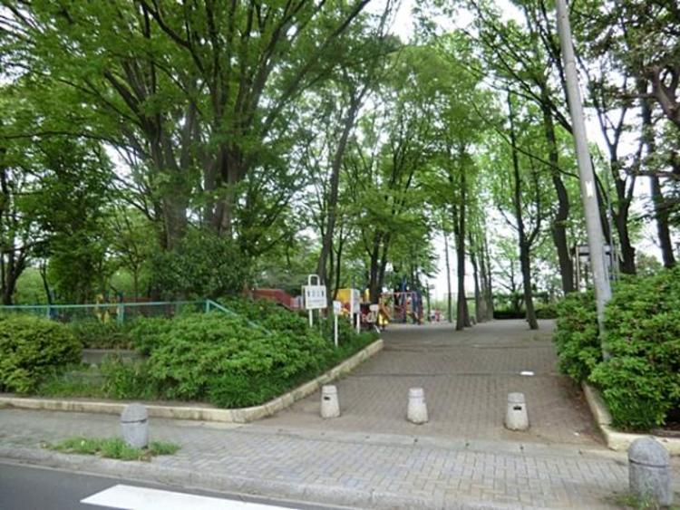 鷺沼公園 85