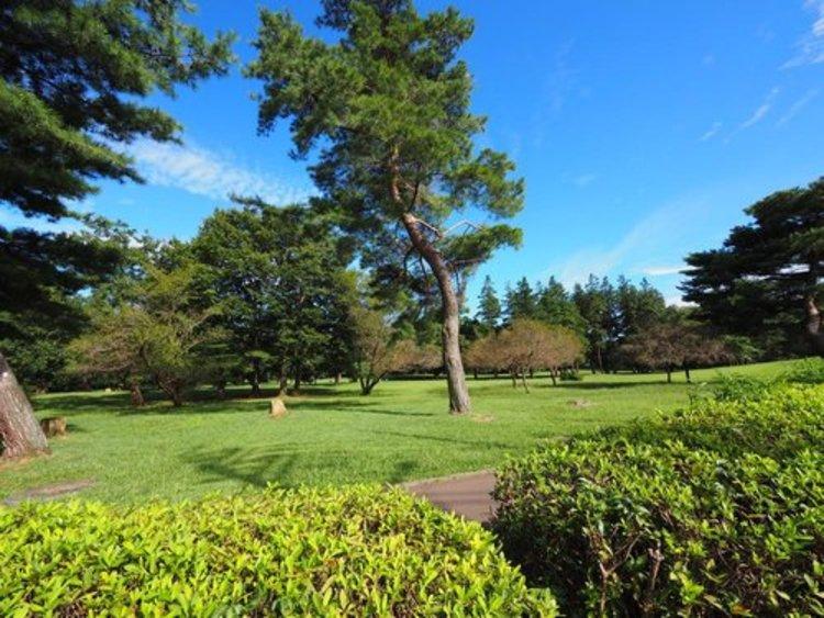 武蔵野公園まで1255m バーベキューも出来る楽しめる場所・・。