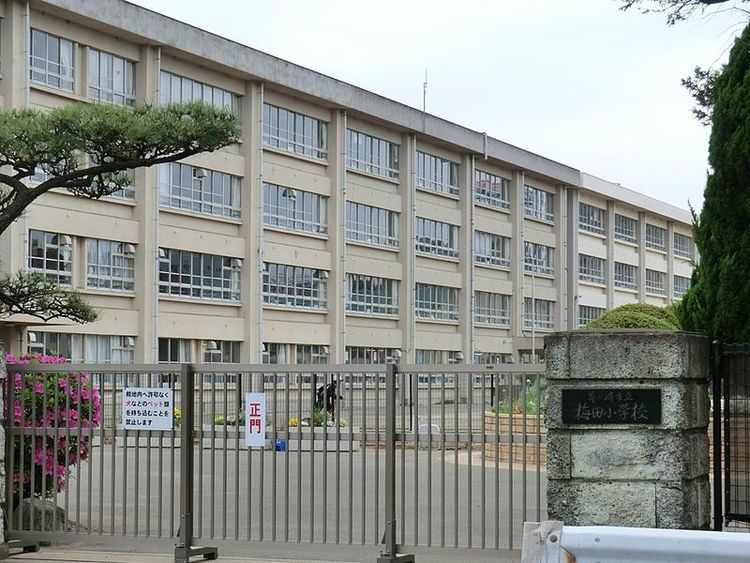茅ヶ崎市立梅田小学校 1220m
