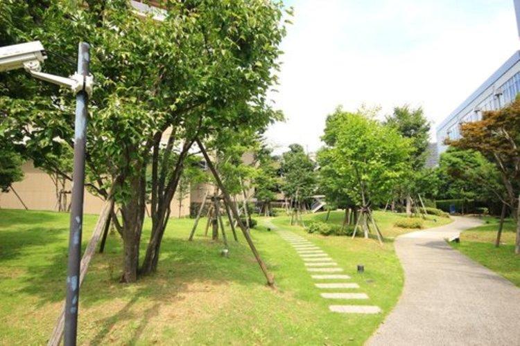 マンションの周囲は緑地が整備されており、気持ちよくお過ごしいただけます。