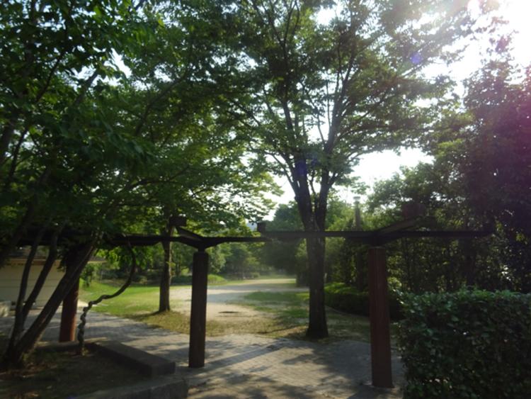 北ひばりが丘公園。別角度から。