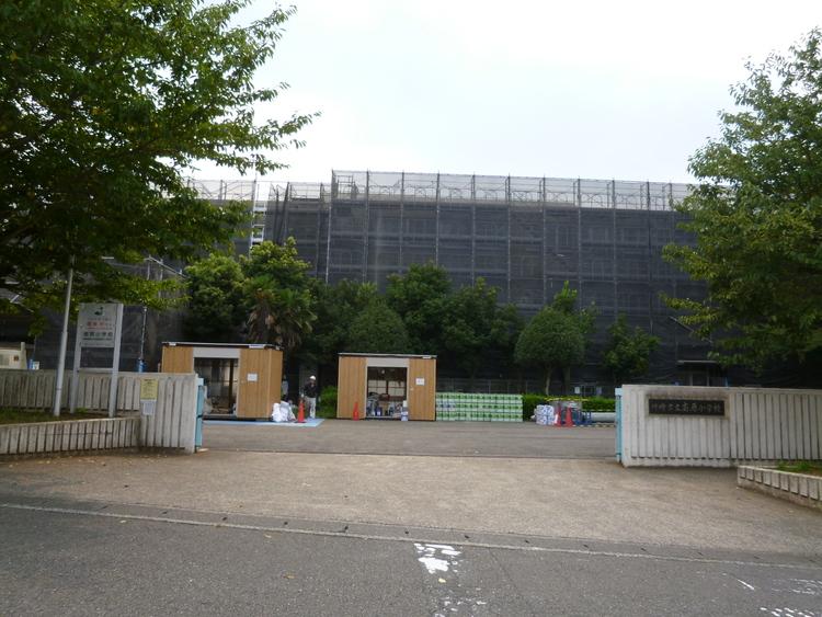 川崎市立南原小学校 10m