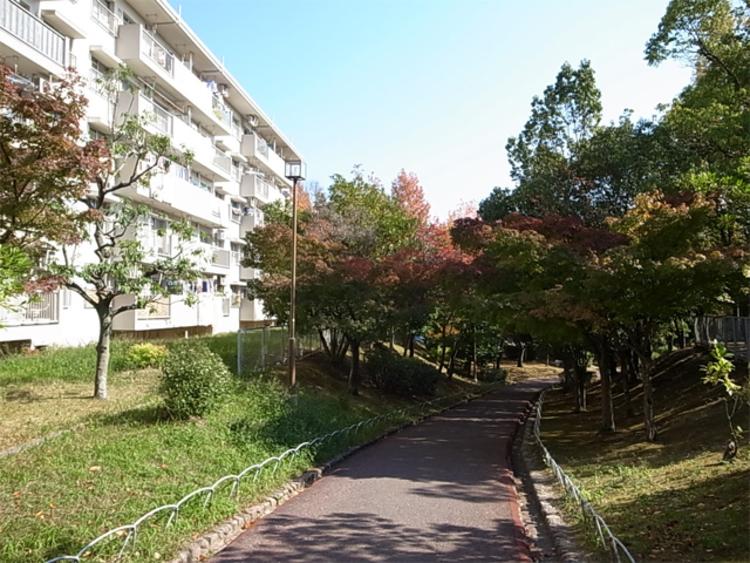 マンション南側の通路