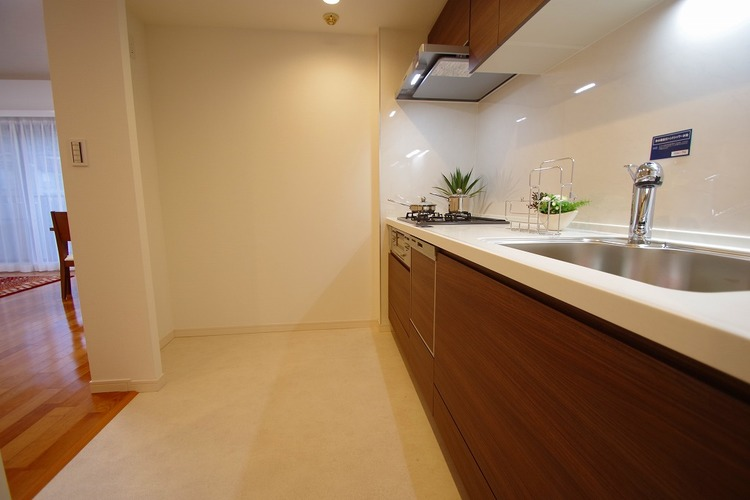 浄水器内臓・食洗器つきシステムキッチン