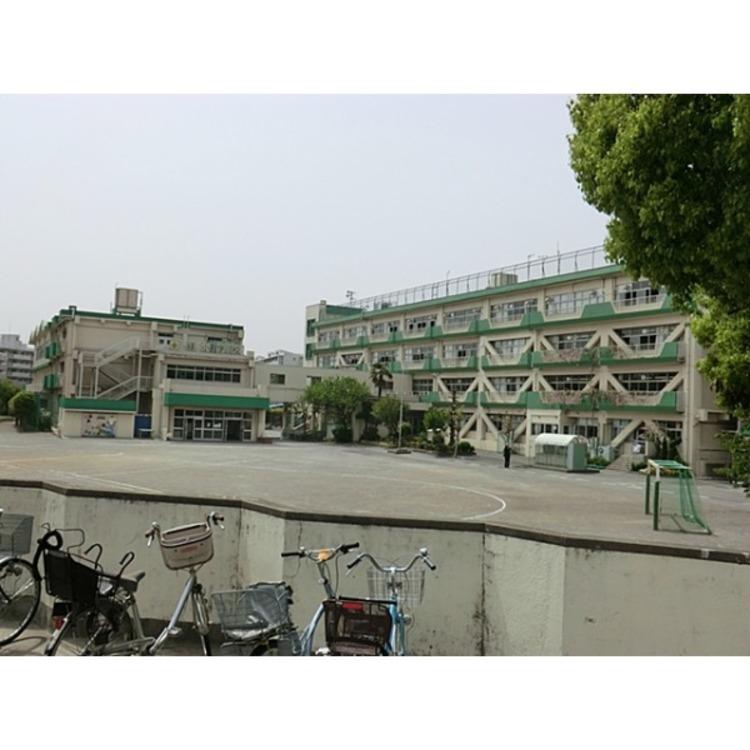 緑小学校(約590m)