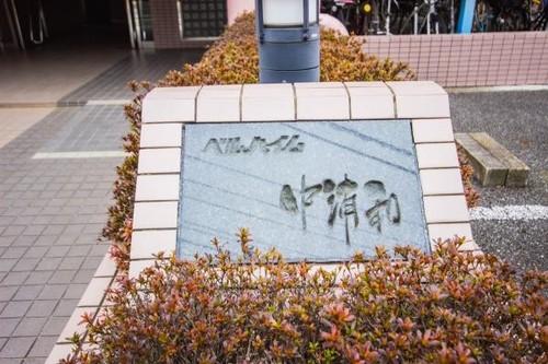 ベルハイム中浦和の画像