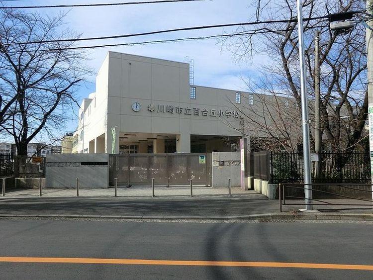 川崎市立百合丘小学校 徒歩11分 850m