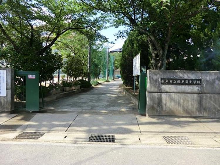 松戸市立殿平賀小学校 800m