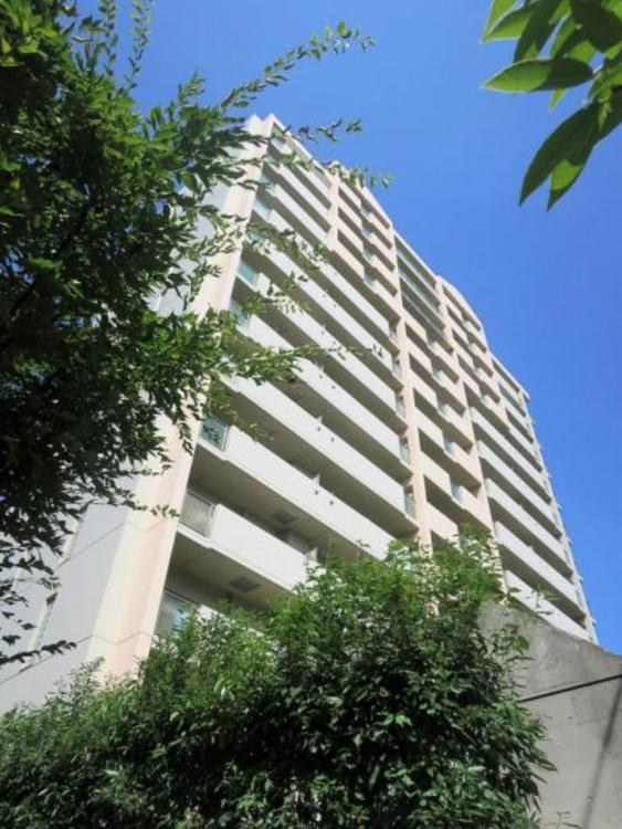 建物の周りには植木に囲まれ、歩道や道路からの距離もちょうど良く離れています。。
