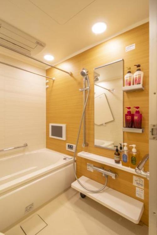 清潔感があり、TVモニター付きの浴室。
