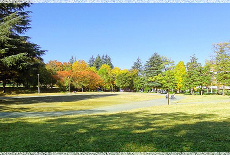 美しが丘公園 距離160m